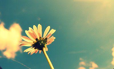 I consigli dello psicologo per trascorrere un'estate all'insegna del relax – Tutti i consigli utili per trascorrere una buona estate